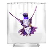 Hummingbird In Flight Shower Curtain