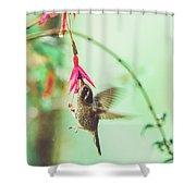 Hummingbird In Flight Sucking On A Juicy Pink Flower Shower Curtain
