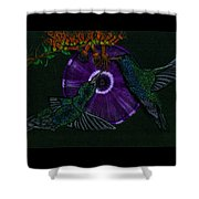 Hummingbird Morning Glory Shower Curtain