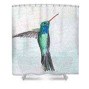 Hummingbird Painting Shower Curtain