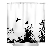 Hummingbird Silhouettes #1 Shower Curtain