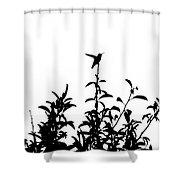 Hummingbird Silhouettes #2 Shower Curtain