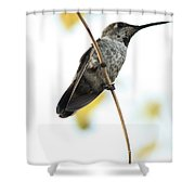 Hummingbird Tongue Shower Curtain