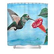 Hummingbird Trumpet Shower Curtain