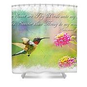 Hummingbird With Bible Verse Shower Curtain