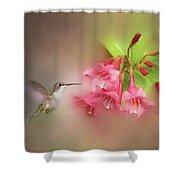 Hummingbird With Flowers Shower Curtain