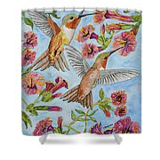 Hummingbirds And Hibiscus II Shower Curtain