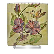 Hummingbirds And Hibiscus Shower Curtain