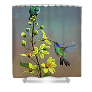 Hummingbirds And Thryallis Shower Curtain