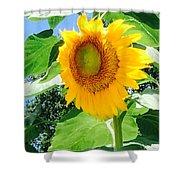 Humongous Sunflower Shower Curtain