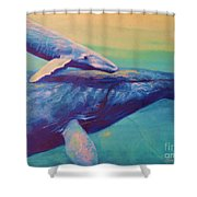 Humpback Whale And Calf Shower Curtain