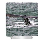 Humpback Whale Flute Alaska Shower Curtain