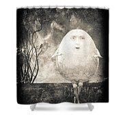 Humpty Dumpty Shower Curtain