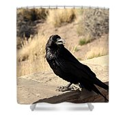 Hungry Crow Shower Curtain