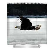 Hungry Eagle Shower Curtain