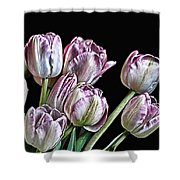 Hungry For Light Shower Curtain