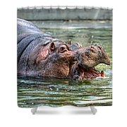 Hungry Hungry Hippo Shower Curtain