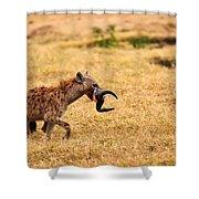 Hungry Hyena Shower Curtain