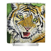 Hungry Tiger Shower Curtain