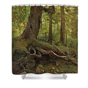 Hunter_in_the_white_mountains_near_glen_house Shower Curtain