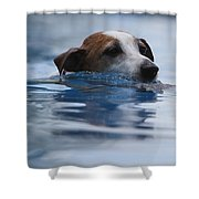 Hunting Dog Shower Curtain