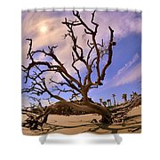 Hunting Island Beach And Driftwood Beaufort Sc Shower Curtain