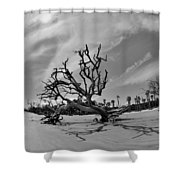 Hunting Island Beach And Driftwood Black And White Shower Curtain