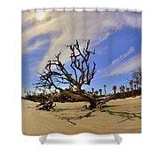 Hunting Island Beach And Driftwood Shower Curtain