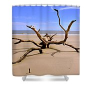 Hunting Island Beach Beaufort Sc Shower Curtain