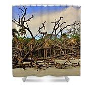 Hunting Island Driftwood Beach Beaufort Sc Shower Curtain