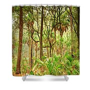 Hunting Island State Park Shower Curtain