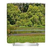 Huntington Beach Central Park II Shower Curtain