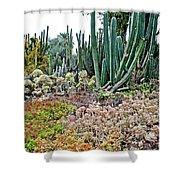 Huntington Desert Garden In San Marino-california Shower Curtain