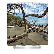 Huntington Island Panorama Shower Curtain