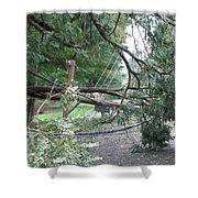 Hurricane Irene Shower Curtain