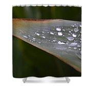 Hurricane Raindrops Shower Curtain