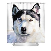 Husky Blue Shower Curtain