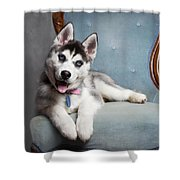 Husky Puppy II Shower Curtain