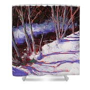 Hyak Stream Shower Curtain by Mary McInnis