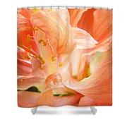 Hybiscus Interior Shower Curtain