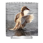 Hybrid Showoff Shower Curtain