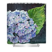 Hydrangea And Water Droplet Shower Curtain