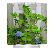 Hydrangea Blooming In October Shower Curtain