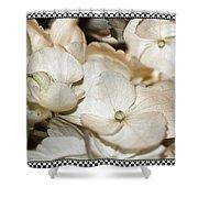 Hydrangea Blossom Framed Shower Curtain
