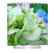 Hydrangea Flowers Art Prints Floral Gardens Gliclee Baslee Troutman Shower Curtain