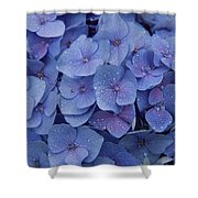 Hydrangea Flowers Shower Curtain