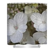 Hydrangea Fractalius Shower Curtain