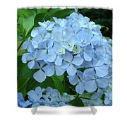 Hydrangea Garden Art Prints Hydrangeas Flower Garden Baslee Troutman Shower Curtain