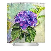 Hydrangea On Clayboard Shower Curtain