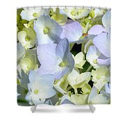 Hydrangea Two Shower Curtain